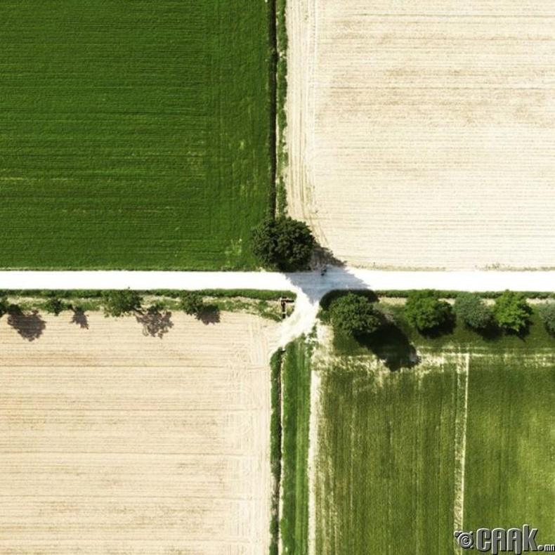 Энэ тариан талбай яг л тосон зураг шиг харагдаж байгаа биз?