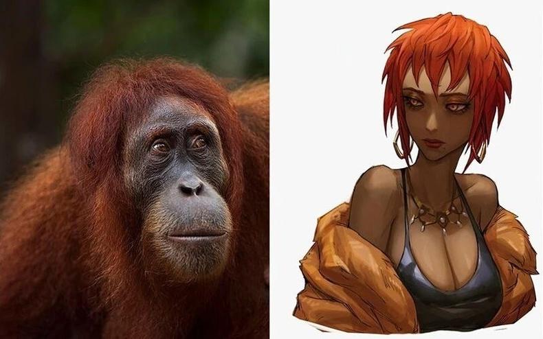 Орангутан бич
