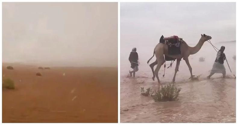 Арабын Нэгдсэн Эмират улсад 50 хэмийн халуунд хиймэл бороо оруулжээ