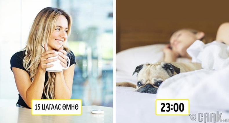 Нойргүйдлийн асуудалтай үед