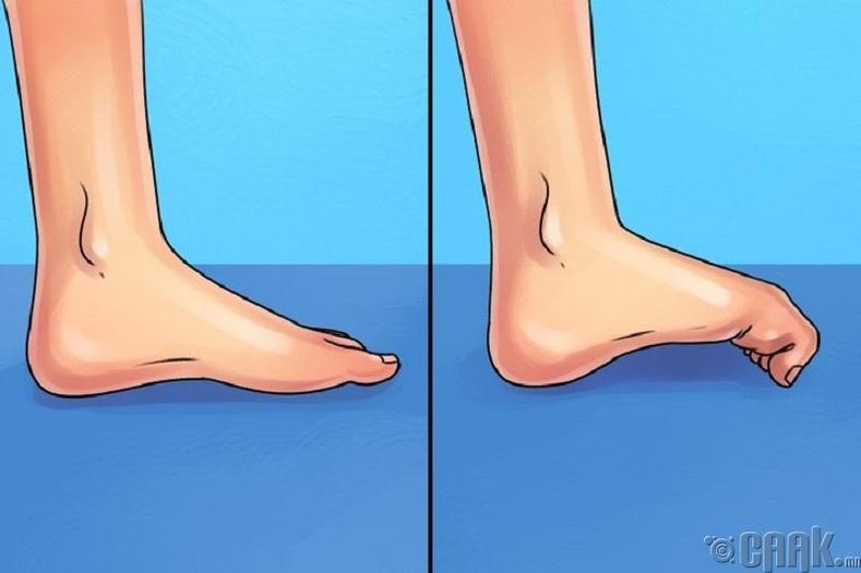 Хөлийн хурууны дасгал