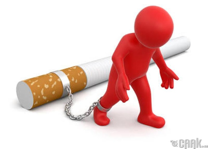 Тамхиа хаях