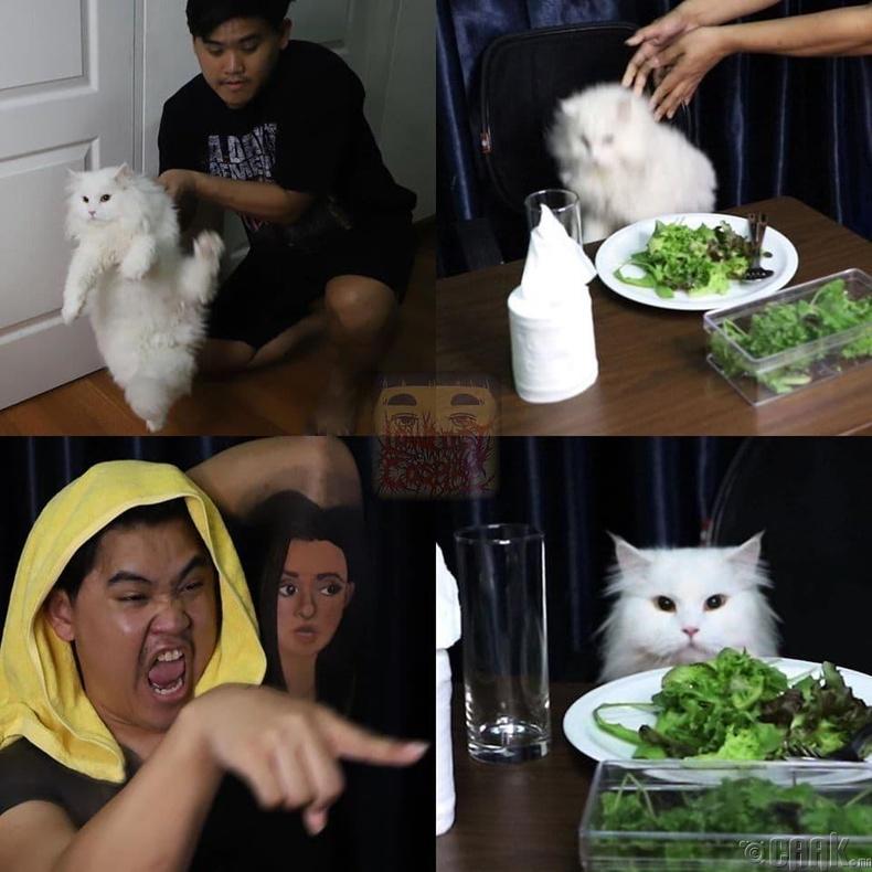 Муур луу хашгичиж буй эмэгтэй