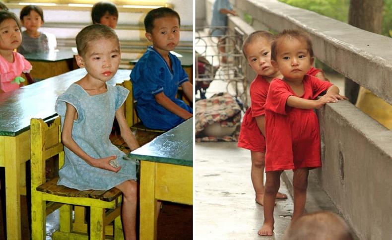 Хойд Солонгос хүүхдүүдийн нүд хальтрам төрх