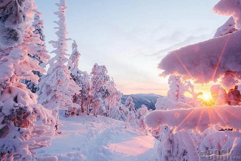 Финланд -  8.382 оноо