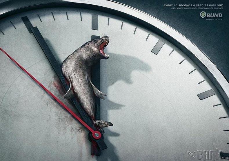 60 секунд тутамд нэг төрөл зүйлийн амьтан мөхөж байдаг
