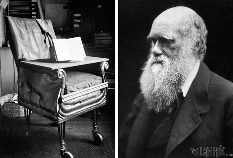 Чарльз Дарвин албан өрөөний сандлыг анх дугуйтай болгосон хүн