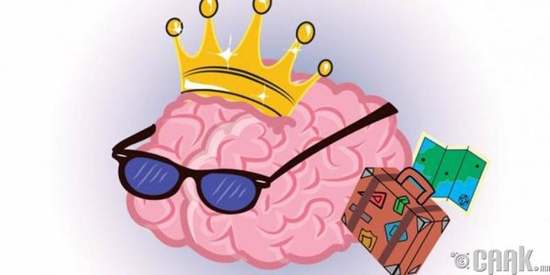 """Тархи яг л булчин шиг хөгжүүлэхгүй бол """"шальчийна"""""""