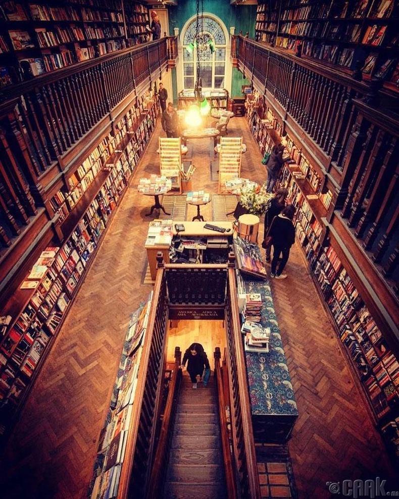 Номын хорхойтнуудад зориулсан гайхамшигт номын сан