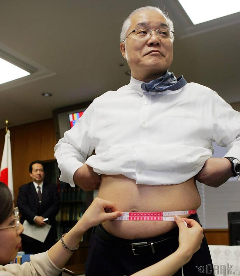 Япон улс - Таргалах