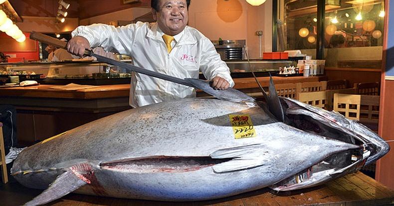 Японд дуудлага худалдаагаар туна загасыг 1.8 сая ам.доллараар заржээ