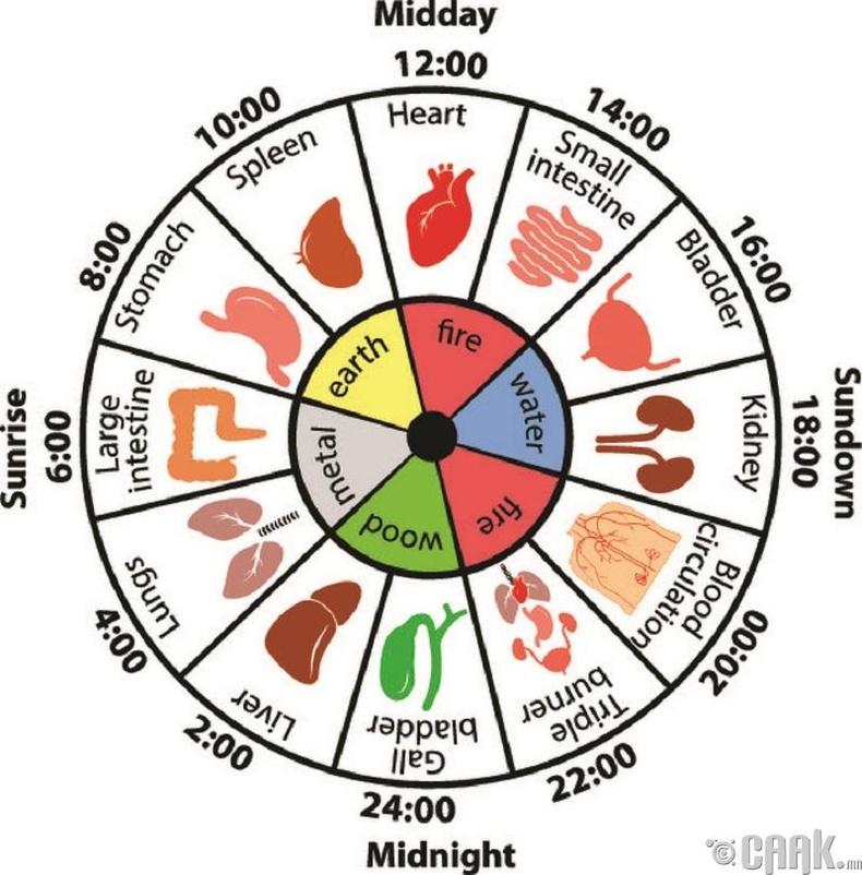 Хятад үд дундын цаг гэж юу вэ?