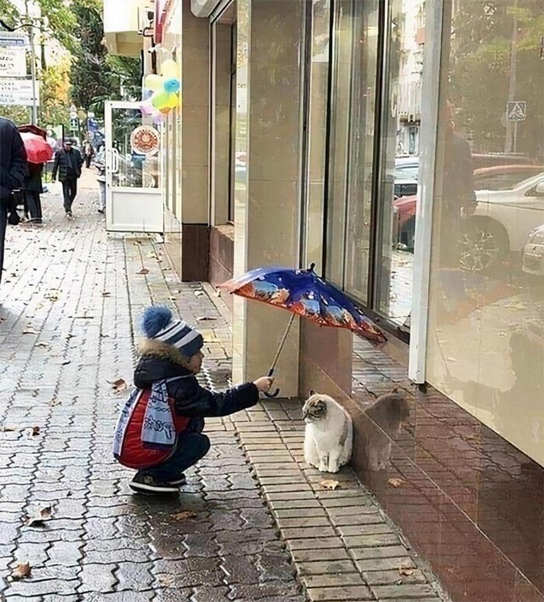 Хүүхдийн сайхан сэтгэл амьтай бүхнийг хайрлана.
