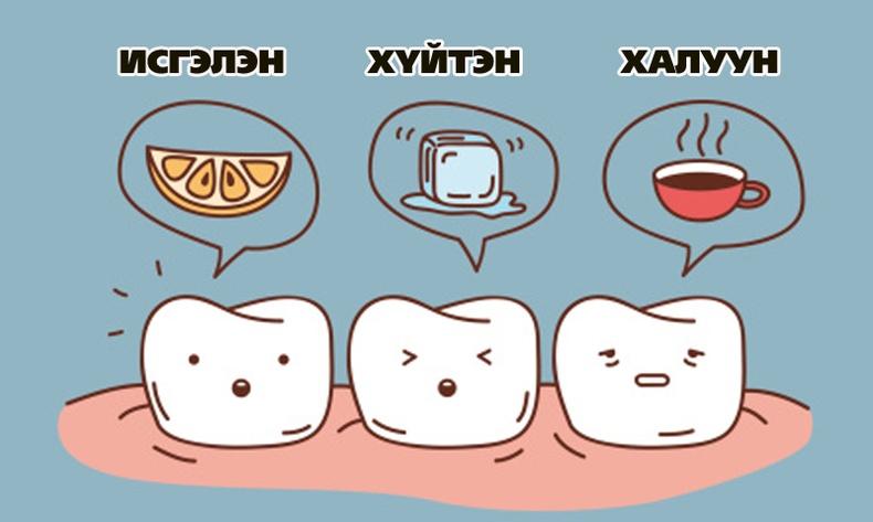 Таны шүд юунаас болж өвчилдөг вэ?