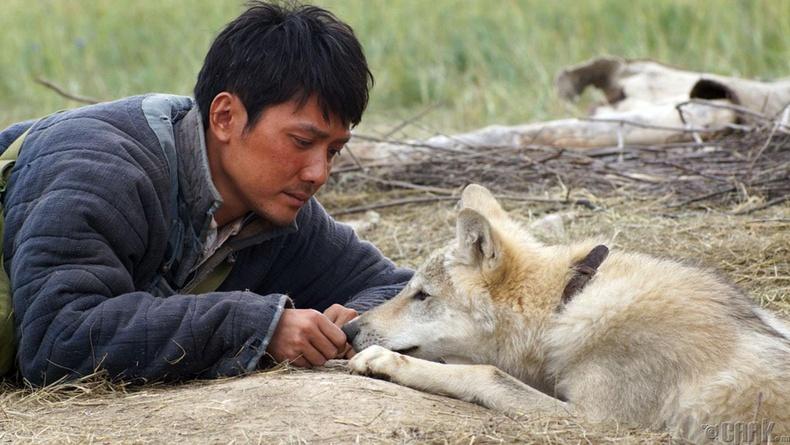 """""""Чонон сүлд"""" (Wolf Totem)"""