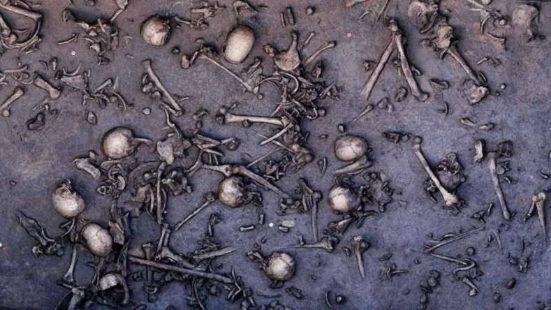 Хүрэл зэвсгийн үеийн цуст тулааныг гэрчилсэн гайхалтай археологийн олдвор