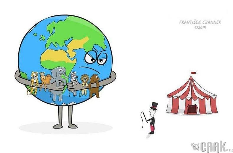 Амьтдаар циркийн үзүүлбэр үзүүлэх нь