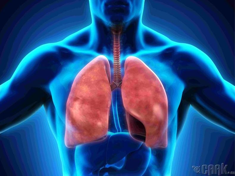 Уушгины үйл ажиллагаа