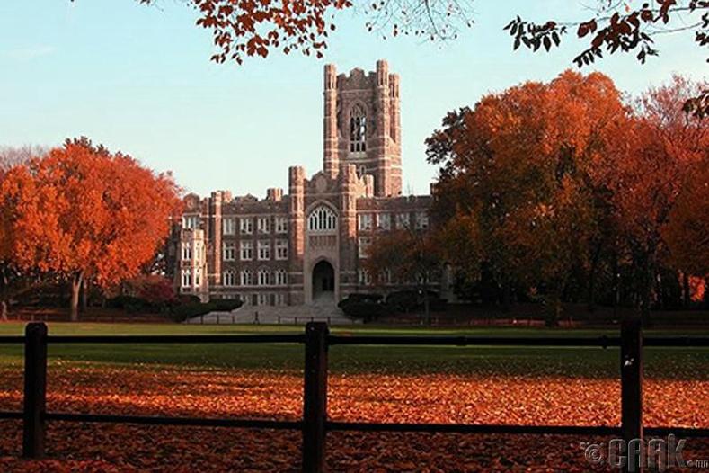 """""""Fordharm"""" их сургууль"""