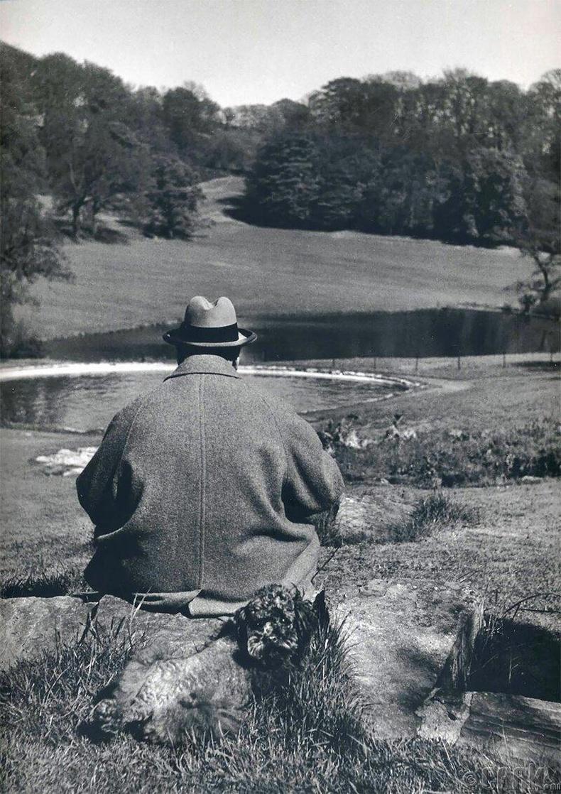 Уинстон Черчилль, Чартвелл дэх өөрийн эзэмшлийн цэцэрлэгт, 1951 он