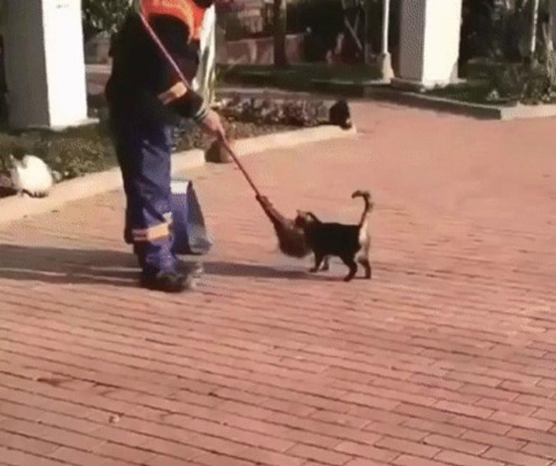 Тэд мууранд маш их хайртай