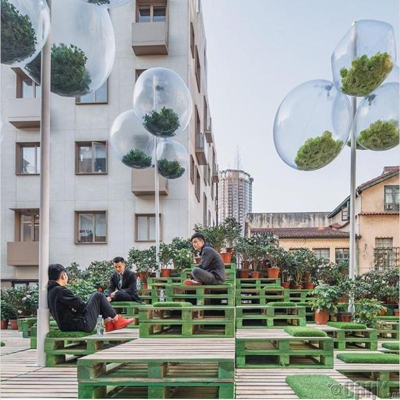 Шанхай хот дахь барилгын дээвэр дээрх цэцэрлэг