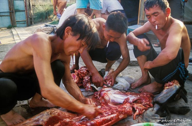 Хонь гаргаж буй гурван эр - Улаанбаатар