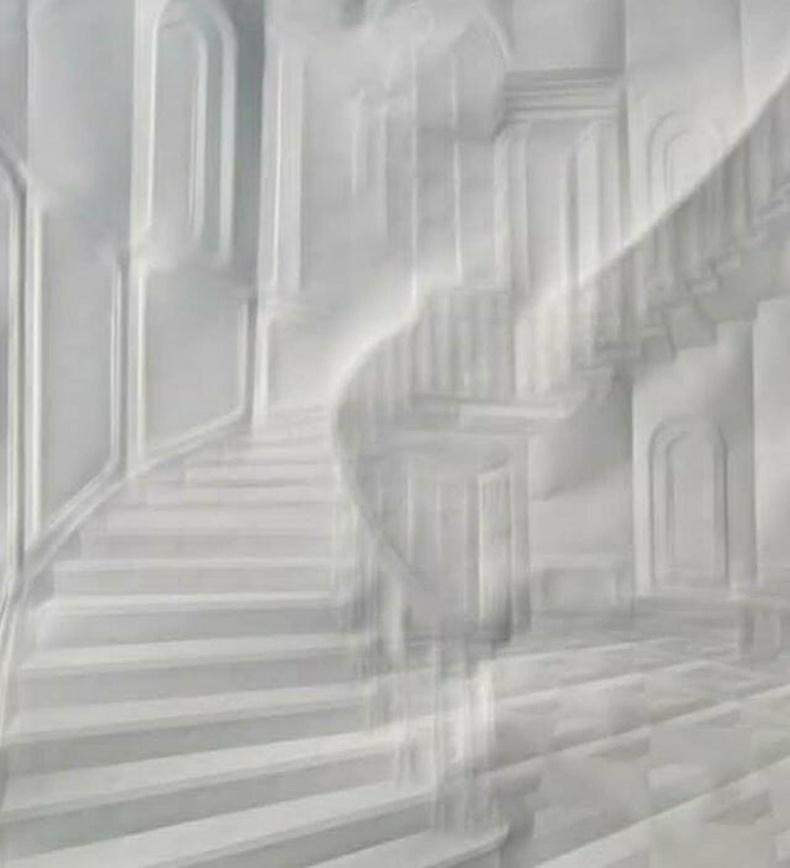 Хуудас цаасыг зөвхөн нугалах аргаар ийм зураг бүтээжээ