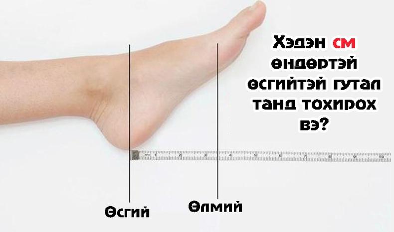Биеийн өндөртөө тохирсон өсгийтэй гутлыг хэрхэн сонгох вэ?