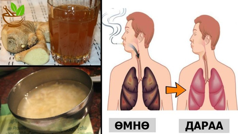 Агаарын бохирдол, тамхины утаанд хордсон уушгийг цэвэрлэх шидэт ундаа