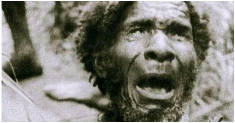 """""""Дэлхий дээр зөвхөн бид амьдардаг"""" гэж боддог байсан Шинэ Гвинейн уугуул иргэдтэй уулзсан түүх"""
