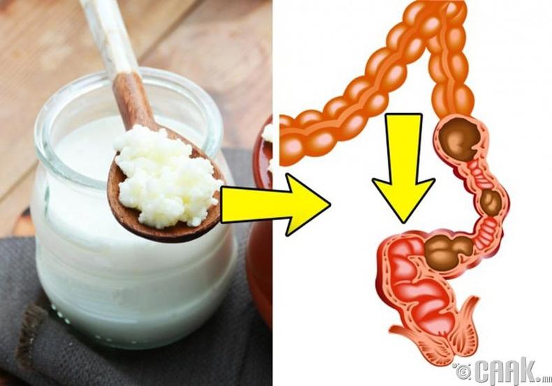 Пробиотиктой хүнс
