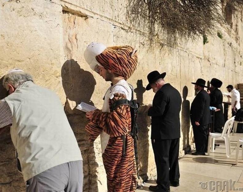 """Иудейн шашны ариун газар Иерусалемын """"Баруун хана"""" дээр хэнтэй ч таарч магадгүй"""