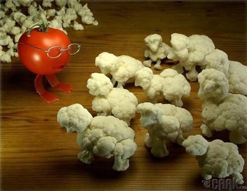 Цэцэгт байцаагаар хийсэн хонинууд