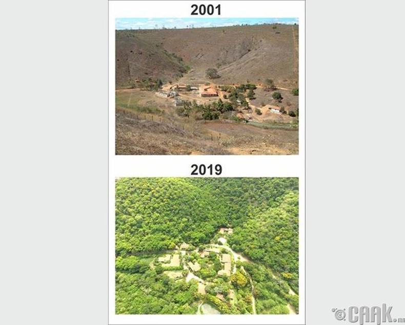 """Хүрээлэн буй орчныг хэргээх """"Instituto Terra"""" төслийн үр дүн"""