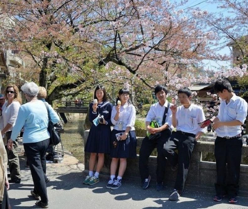 Япон: Байгаль орчиндоо дурлах