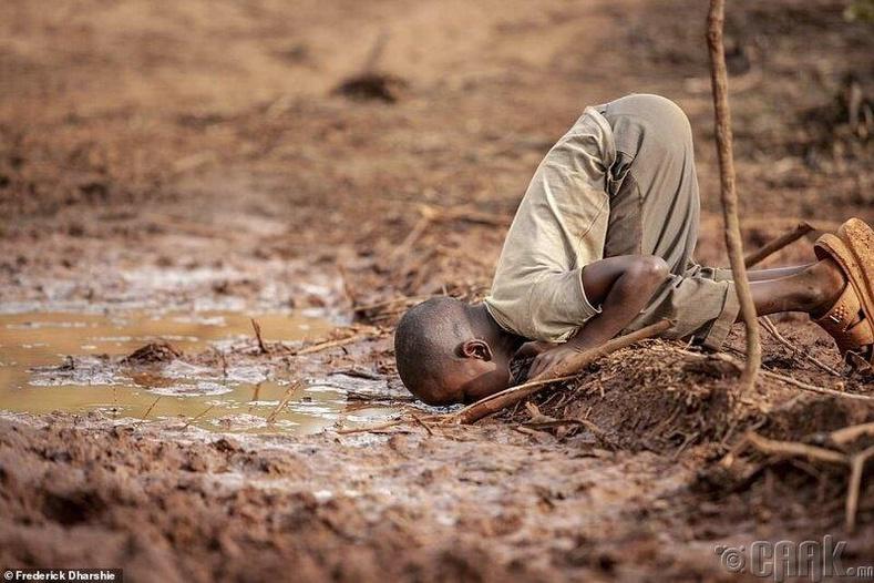 """""""Усны хүртээмж, тогтвортой байдал"""" төрлийн ялагч - Гэрэл зурагчин Фредерик Дарши-Висо"""