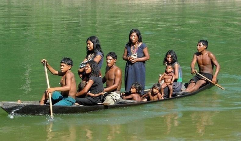 Цаг хугацааны ямар ч ойлголтгүй амьдардаг Амазоны ширэнгэн ойн омог