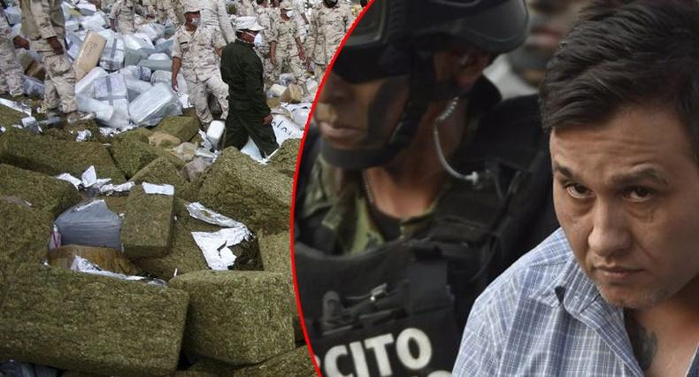 """Мексикийг """"атгадаг"""" хамгийн цуутай, хүчирхэг хар тамхины бүлэглэлүүд"""