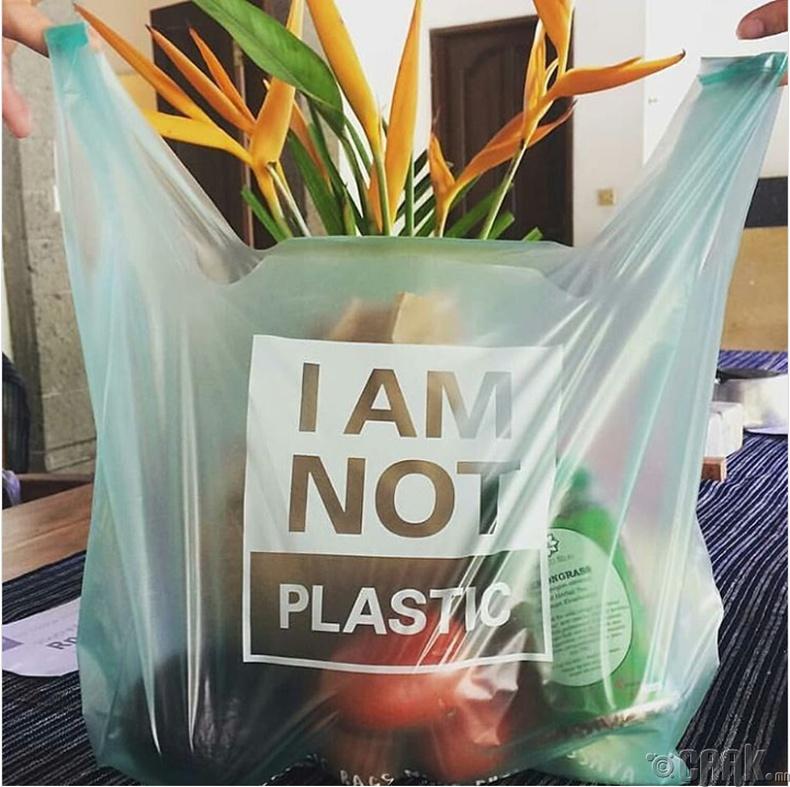 Хэрвээ олж чадвал сарын дотор байгальд задардаг гялгар уут хэрэглээрэй