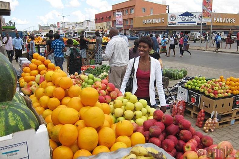 Лусака, Замби