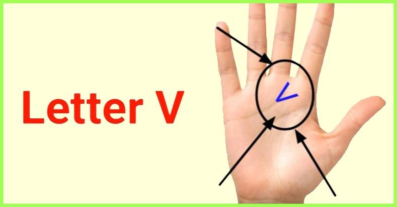 Таны гарын алган дээр V үсэг бүхий зураас байдаг уу?