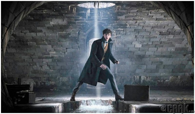 """""""Fantastic Beasts and Where to Find Them 2"""""""