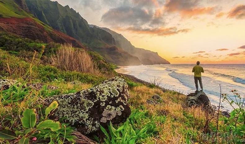 Хавай (Hawaii) арал, АНУ