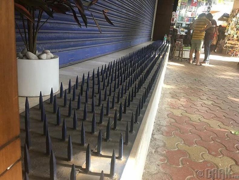 Мумбайд гэр оронгүй хүмүүс их байдаг учир унтахад тохиромжтой ихэнх гадаргууд ийм гадас суулгадаг байна.