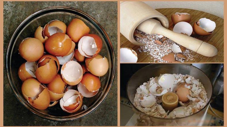Өндөгний хальсыг хаяж болохгүй 6 шалтгаан
