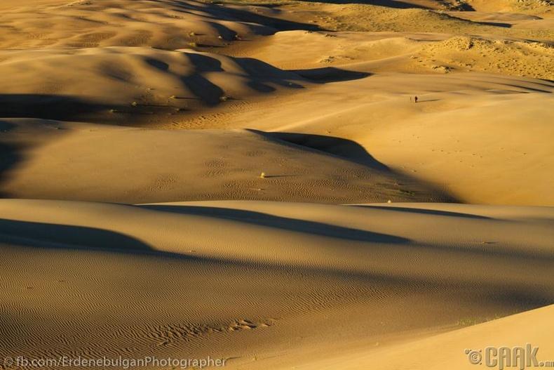 Монгол элс, Завхан аймаг