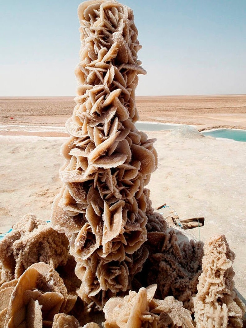 """""""Цөлийн сарнай"""" нэртэй гайхамшигт үзэгдэл. Байгаль өөрөө давс болон элсээр бүтээдэг"""