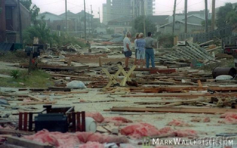 Опал хар салхи, 1995 он