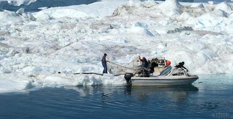 Илүлиссагийн аманд хөвж буй мөснүүдийн дундуур Инуит загасчид тор хаяж байна
